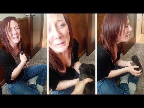 Volunteer Cries After Meeting Newborn Fox Pups