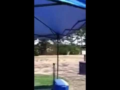 Review for Shade Tech® 10ft x 10ft Instant Canopy & Review for Shade Tech® 10ft x 10ft Instant Canopy - YouTube