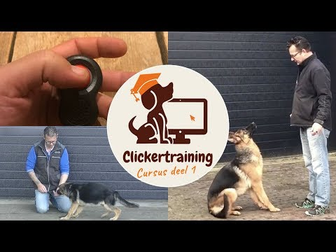 Clickertraining for dogs, part 1