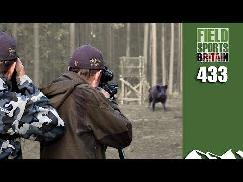 Fieldsports Britain - Wild Boar in your Sights