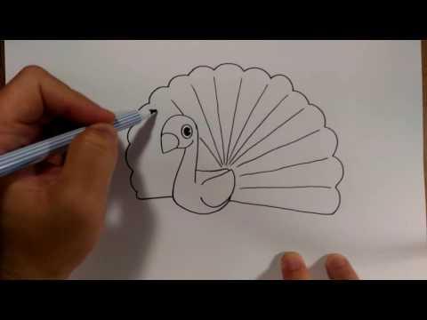 วาดการ์ตูน นกยูง ง่ายๆ |สอนวาดรูป | วาดการ์ตูน กันเถอะ