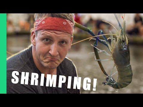 Shrimping in Taipei, Taiwan!