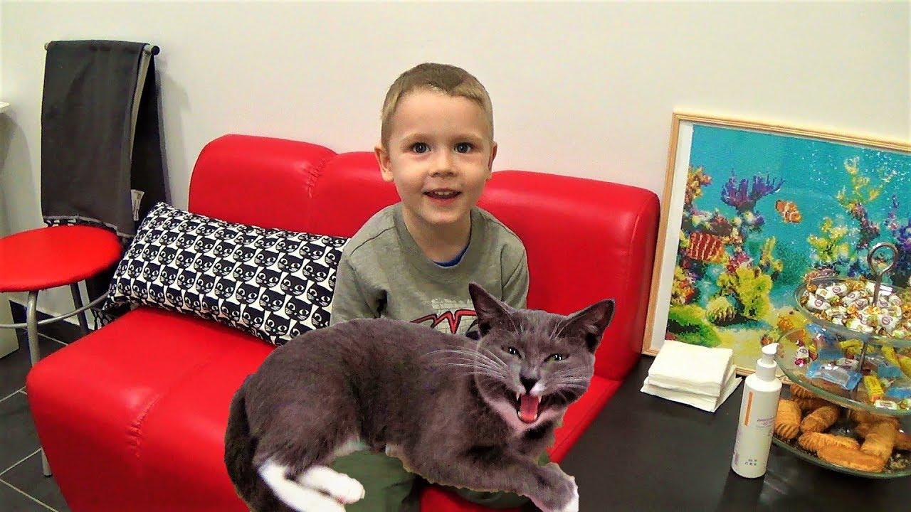 Макс в котокафе играет с кошками развлечения для детей в Перми