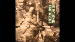 Dub syndicate - Stoned immaculate