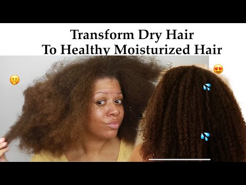 watch-me-transform-my-dry-hair-into-moisturized-healthy-hair- -wash-day