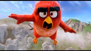 ムビコレのチャンネル登録はこちら▷▷http://goo.gl/ruQ5N7 飛べない鳥た...