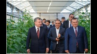 Президент Шавкат Мирзиёев 13-14 декабря посетил Кашкадарьинскую область