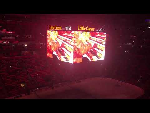 Detroit Red Wings vs Edmonton Oilers (11-22-2017) | Official FLP Pregame Show Video