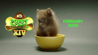 Puppy Bowl XIV | Coming February 2018