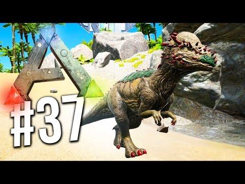 "ARK : Survival Evolved - BRAND NEW DINOSAUR ""PACHY""! EP 37 (Ark Survival Evolved)"