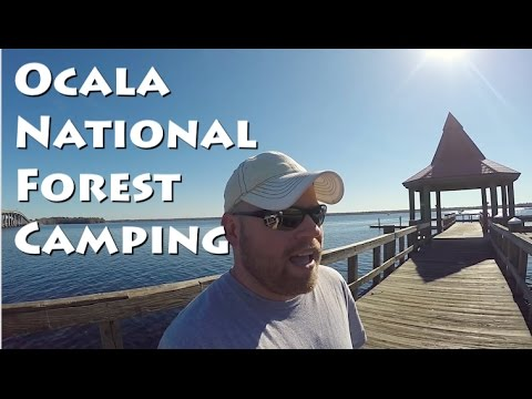 Ocala National Forest & Q&A Submission Request