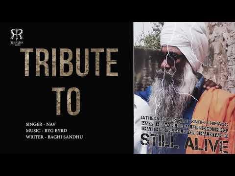 Bagga Shera| Nav Sandhu| Byg Bird|pannu offical| New Punjabi Song 2018