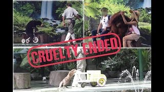 Zoo ends animal performances end cruelty is exposed