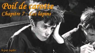 Poil de Carotte - Chapitre 7 : Les lapins