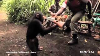 Dailymotion   Восстание планеты обезьян Rise of the Planet
