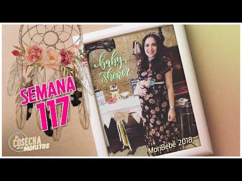 SEMANA 117 / TERCER BABY SHOWER DE MORIBEBE
