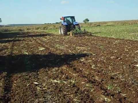 Posible secuestro exprés en Nueva Toledo - Caaguazú