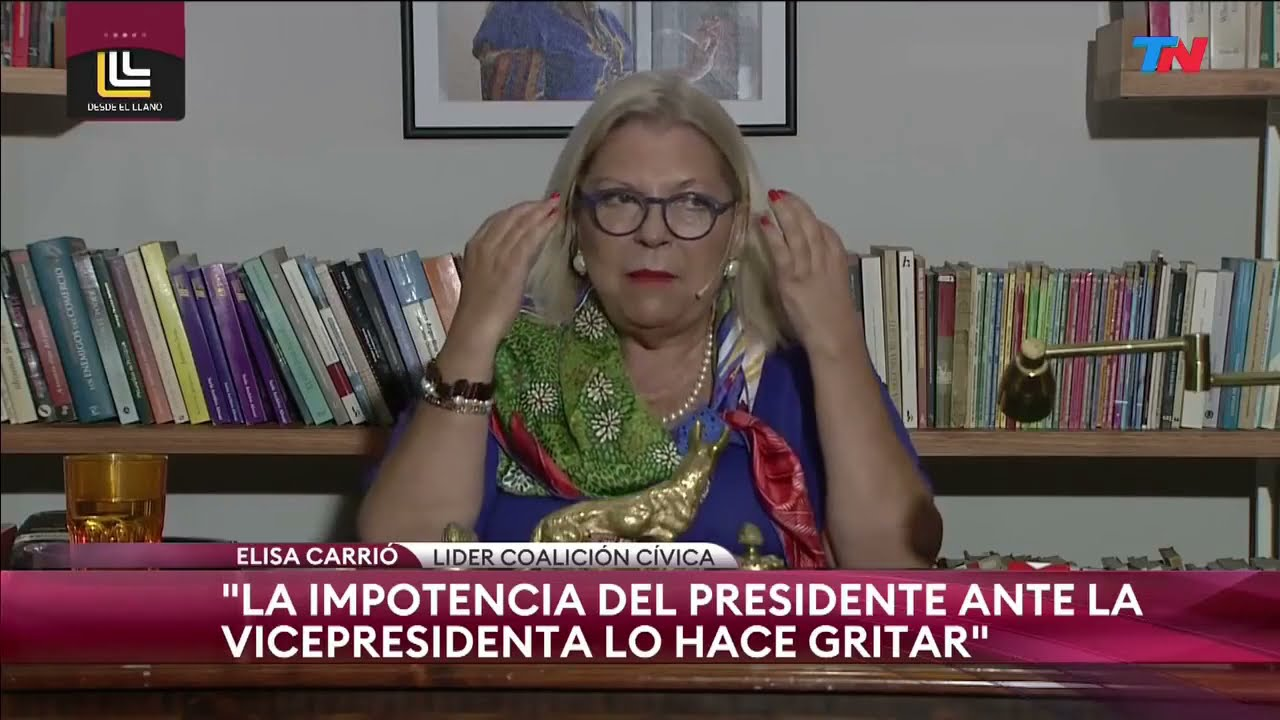 Carrió avaló la postergación de las PASO