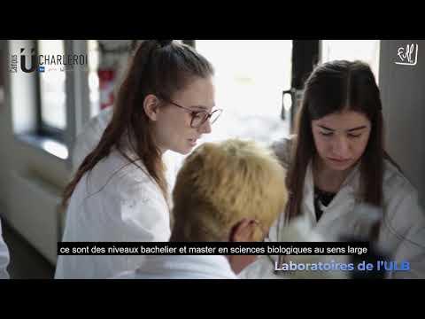 Campus U Charleroi: Bachelier en Sciences biologiques // Débouchés