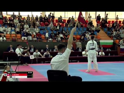 European Championship Live Stream / Прямая трансляция Чемпионата Европы
