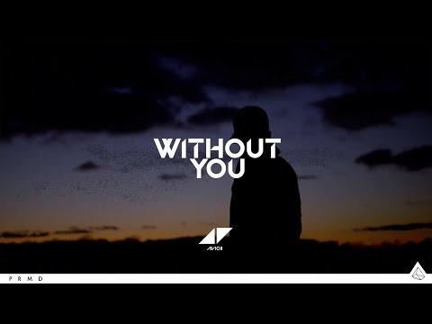 Avicii ║Without You [Lyrics Video]