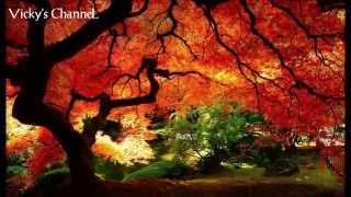 Phaeleh - Afterglow feat Soundmouse [HD] with Lyrics