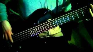 Ignoreland Bass Cover