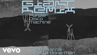 Calvin Harris, Rag'n'Bone Man - Giant (Purple Disco Machine Remix) [Audio] Video
