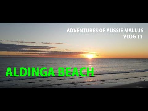 Aldinga Beach / South Australia / Adventures Of Aussie Mallus / Vlog 11