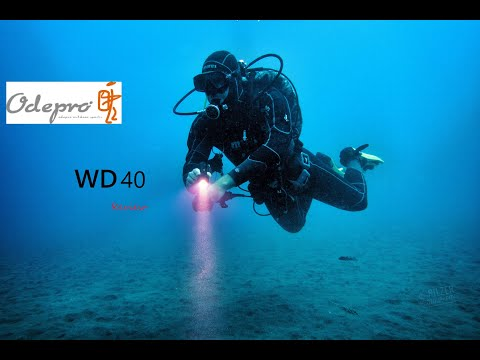 MASTER Runtime Back-up  REVIEW | Odepro WD40