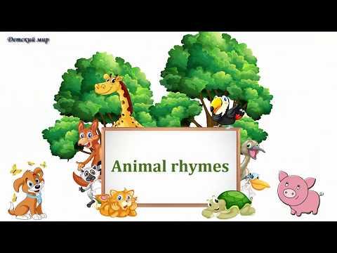 Animal Rhymes In English. Стишки про животных на английском языке.