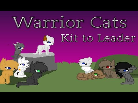 Warrior Cat Game Kit To Leader