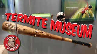 Museum Inspired by Termites - Cook Museum of Natural Sciences