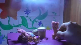 жареная морковка Хрюня в гостях у Крипера 2 серия