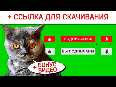 Футаж подписка и лайк на зелёном фоне. Футаж лайк и подписка