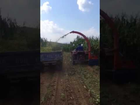 Farming Corn Silage Harvesting machine Hay Forage Harvester