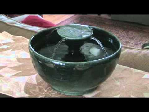 Cat Water Fountain Green Octopus Thirsty Cat Fountains YouTube