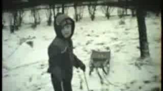 Zima 1982 83