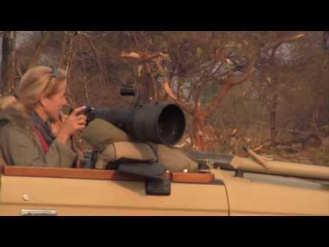 African Safari Photography Tips