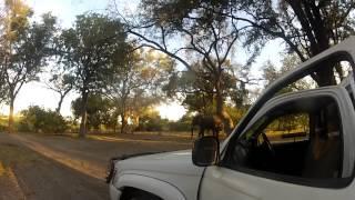 Botswana Tour - Kharma/Kubu/Maun/Xakanaxa/Savuti/Kasane/Vic Falls