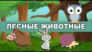 Лесные животные. Детские загадки.