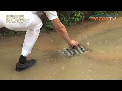 Dr Koh Poh Koon unclogs drain at Punggol East