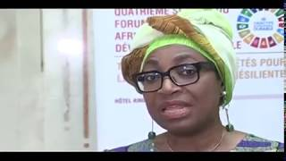 Fourth session of the Africa Regional Forum on Sustainable Development thumbnail