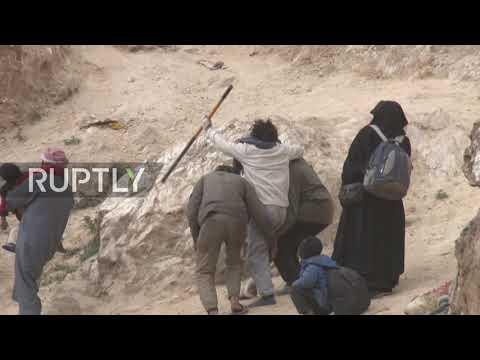 Syria: More militants surrender to SDF near Baghouz
