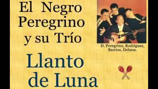 El Negro Peregrino y su Trío:  Llanto de Luna  -  (letra y acordes)