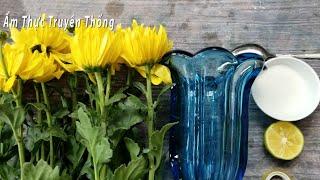 Cách cắm hoa cúc KHÔNG CẦN XỐP giữ hoa tươi 15 NGÀY