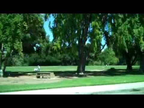 San Jose Real Estate – San Jose Homes for Sale – 408-256-4219