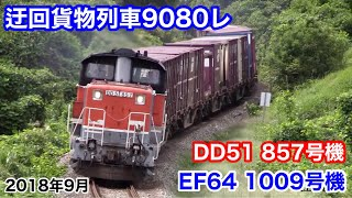 【JR貨物 迂回貨物列車9080レ 山陰本線・伯備線(DD51 857号機・EF64 1009号機) 2018.9.13】