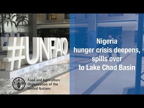 Nigeria hunger crisis deepens, spills over into Lake Chad Basin