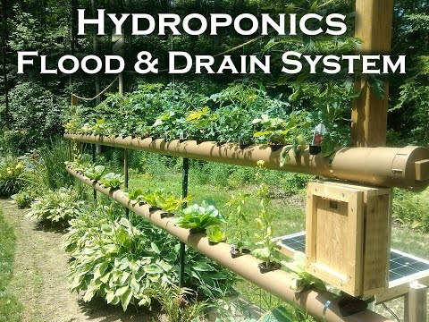 Hydroponics  Garden Vegetables (PVC)  With Solar Powered Automatic Watering System